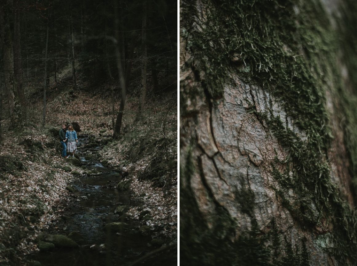 forest_photography_session_mr_pion1