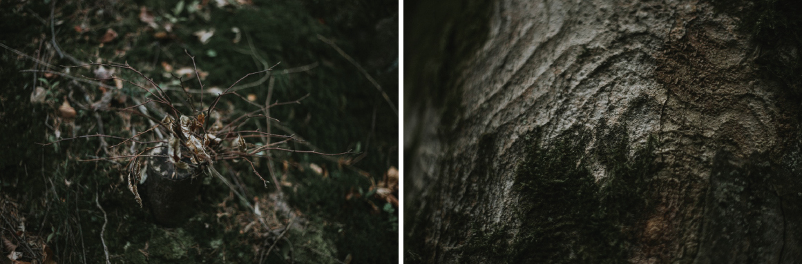 forest_photography_session_mr_poziom5