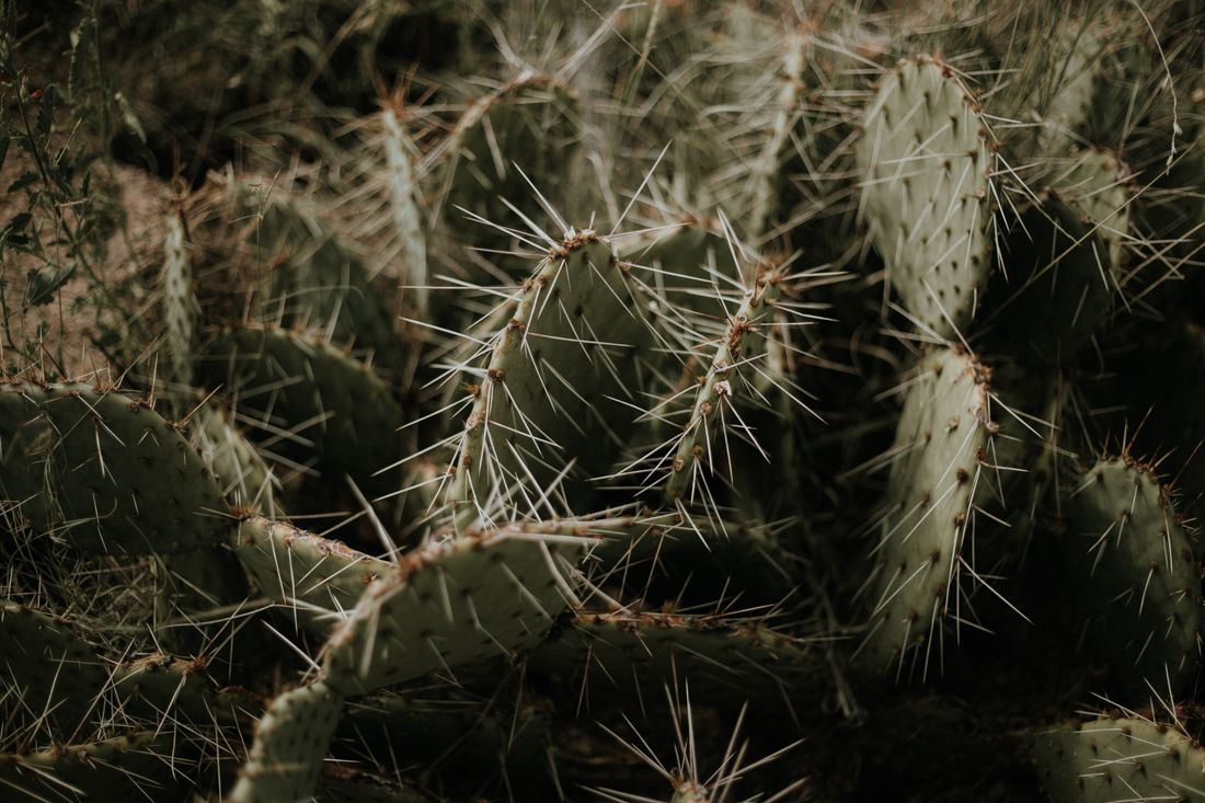 newmexico_1_photography_mr-17